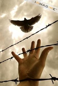 Youth behind bars