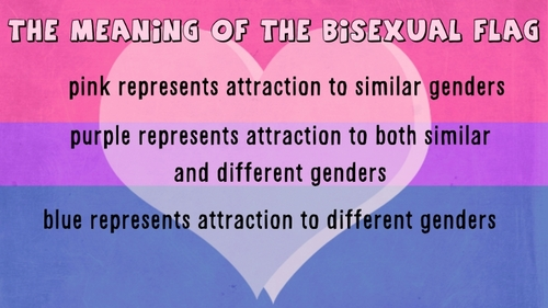 Bisexual Flag and Meaning