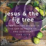 """Green figs in a decorative white bowl and plate spilling onto a wooden table; one fig is cracked open to reveal red fruit inside. Text reads: """"Jesus & the fig tree: when manure stands in the gap between us and judgment, Luke 13:1-9"""""""